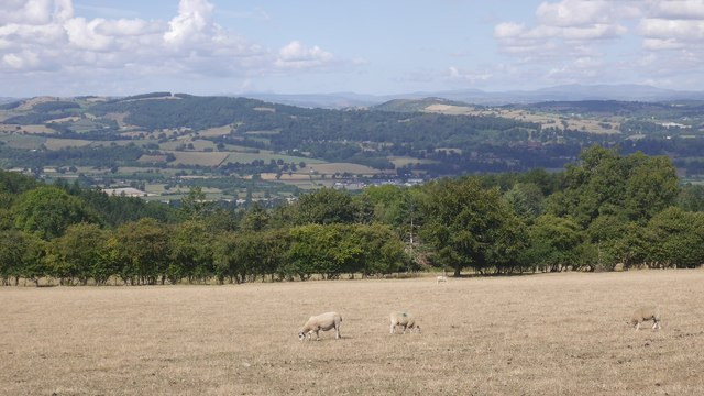 View over Welshpool