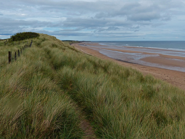 Dunes at Hadston Links