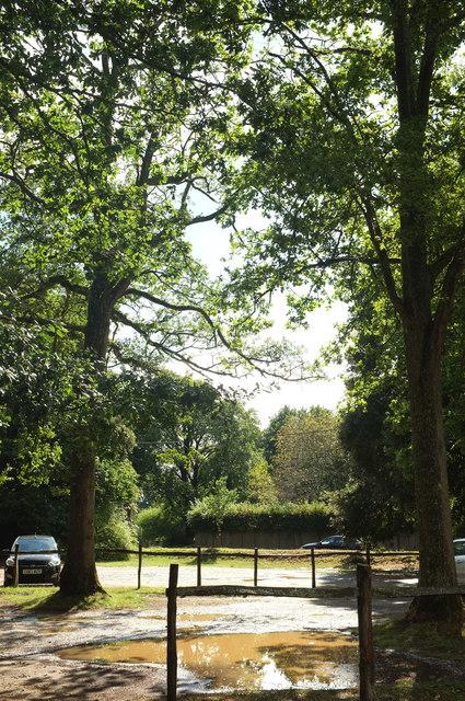 Car park, Winkworth Arboretum