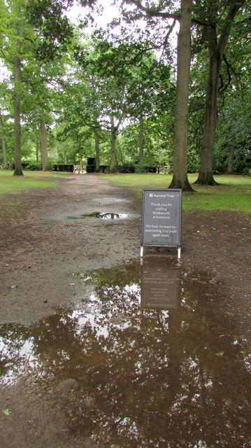 Path from tea room, Winkworth Arboretum
