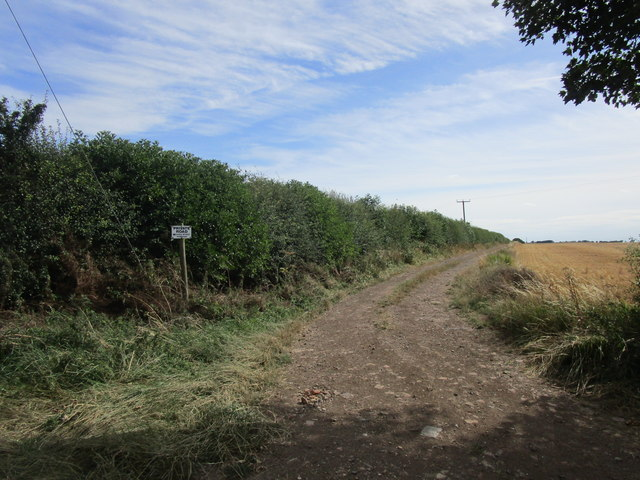 Farm track off South Leys Lane