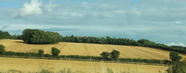 Fields west of Dummer
