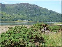 NS0178 : Loch Riddon mud flats by Thomas Nugent