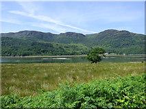 NS0179 : Loch Riddon mud flats by Thomas Nugent