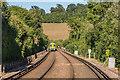 TQ2657 : Railway through Chipstead Bottom by Ian Capper