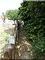 TQ7794 : Footpath to the A132 Burnham Road by Adrian Cable