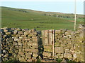 SD7170 : Stile with gate east of Cold Cotes by Humphrey Bolton