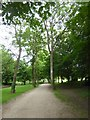 SU1084 : Ornamental Walk, Lydiard Park by David Smith