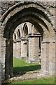 SJ6404 : Columns at Buildwas Abbey by Philip Halling
