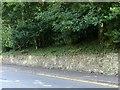 SK3516 : Roadside wall, Kilwardby Street, Ashby-de-la-Zouch by Alan Murray-Rust