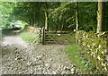 SD7470 : Clapdale Lane and gate into Clapdale Wood by Humphrey Bolton