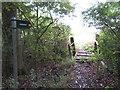 SU2688 : Footpath and small bridge near Compton Beauchamp by Gareth James