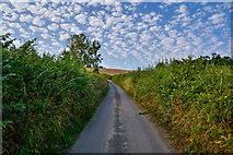 SS8305 : Mid Devon : Downhayne Hill by Lewis Clarke