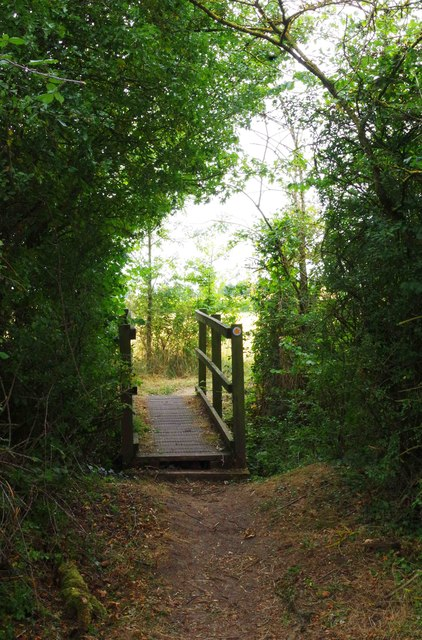 Footbridge and footpath, Shillbrook Wood near Bampton, Oxon