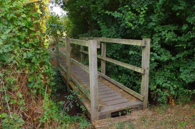 Footbridge in Shillbrook Wood near Bampton, Oxon