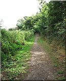 ST0107 : Cullompton: Goblin Lane 2 by Martin Bodman
