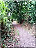 ST0107 : Cullompton: Goblin Lane 3 by Martin Bodman