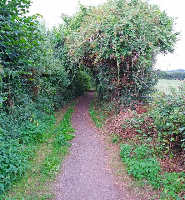 Cullompton: Goblin Lane 4