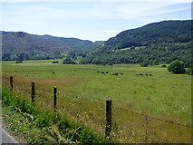 NR9984 : Farmland at Glendaruel by Thomas Nugent
