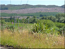NS0281 : Power lines by the B836 by Thomas Nugent