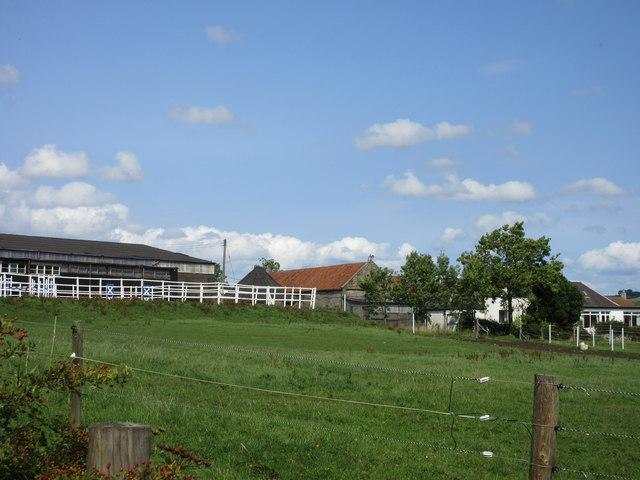 Balcormo outbuildings and paddocks
