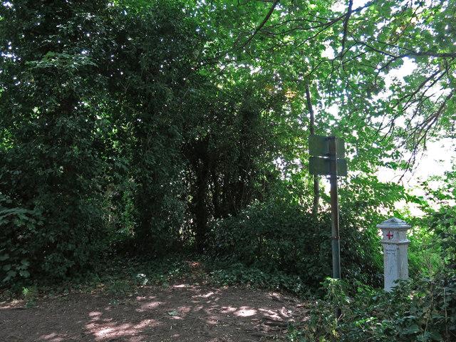 Footpath on the north side of Desborough Island (2)