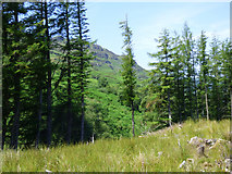 NS0482 : Deforested area by the B836 road by Thomas Nugent