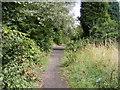 SO9593 : Princes End Path by Gordon Griffiths