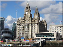 SJ3390 : Royal Liver Building, Liverpool by Richard Rogerson