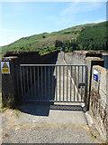 NS0783 : Tarsan dam walkway by Thomas Nugent