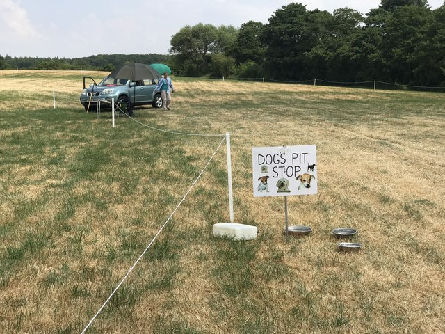 Water for dogs at Stafford Horse Trials
