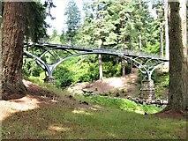 NU0702 : Iron Bridge, Cragside, near Rothbury by G Laird