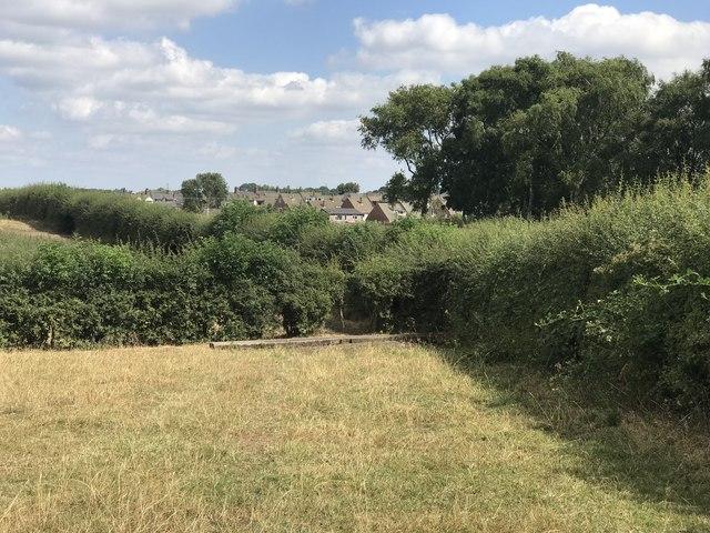 Field corner near Bignall End