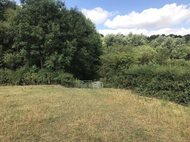 Footpath entering Leddy's Field