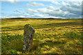 NZ7505 : Standing Stone, Glaisdale Swang by Mick Garratt