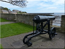 NU0052 : Cannon at Fisher's Fort by Mat Fascione