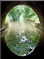SP6484 : Emerging from Husband Bosworth Tunnel, Leicester by Roger  Kidd