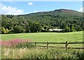 J0814 : The forested Black Mountain above Ravensdale by Eric Jones
