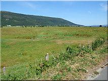 NS1481 : Field near Dalinlongart by Thomas Nugent