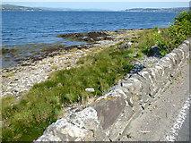 NS1879 : Shore at Hunters Quay by Thomas Nugent
