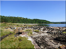 NS2074 : Bedrock at Lunderston Bay by Thomas Nugent