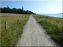 NS2073 : Path at Lunderston Bay by Thomas Nugent