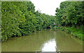 SP6486 : Canal near Theddingworth in Leicestershire by Roger  Kidd