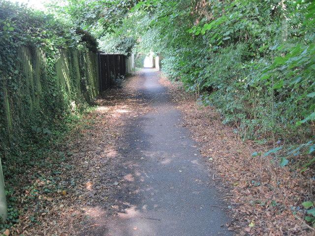 St Swithun's Way in Alton