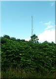 J0613 : Telecommunications mast located between the L7093 and the Dublin to Belfast railway line by Eric Jones