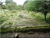 SK0017 : Rugeley (Penkridge Bank) Camp '13 Lines'- Shower Block (looking W) by John M