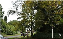 SU8821 : Elmsleigh, Midhurst by David Howard