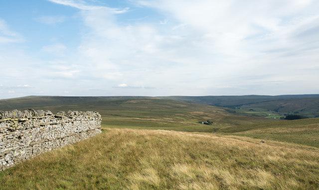 Grassy moorland on Hard Rigg