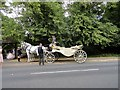 NZ0652 : Waiting for the bride and groom by Robert Graham