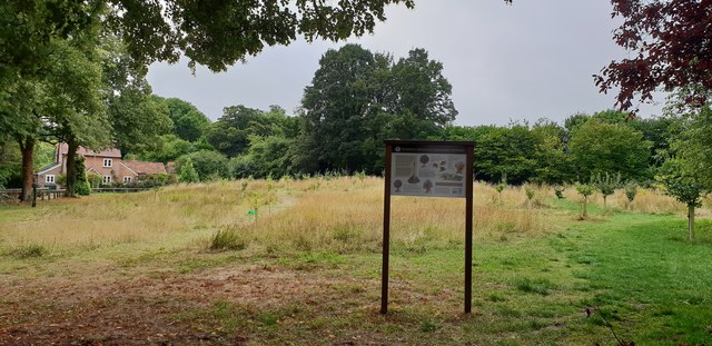 Community orchard, Wendover